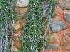 Alhambra: The Gardens - 4 20170510_6992