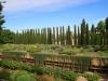 Alhambra: The Gardens - 17 IMG_7521
