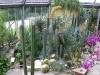 Berlin Botanische Garten