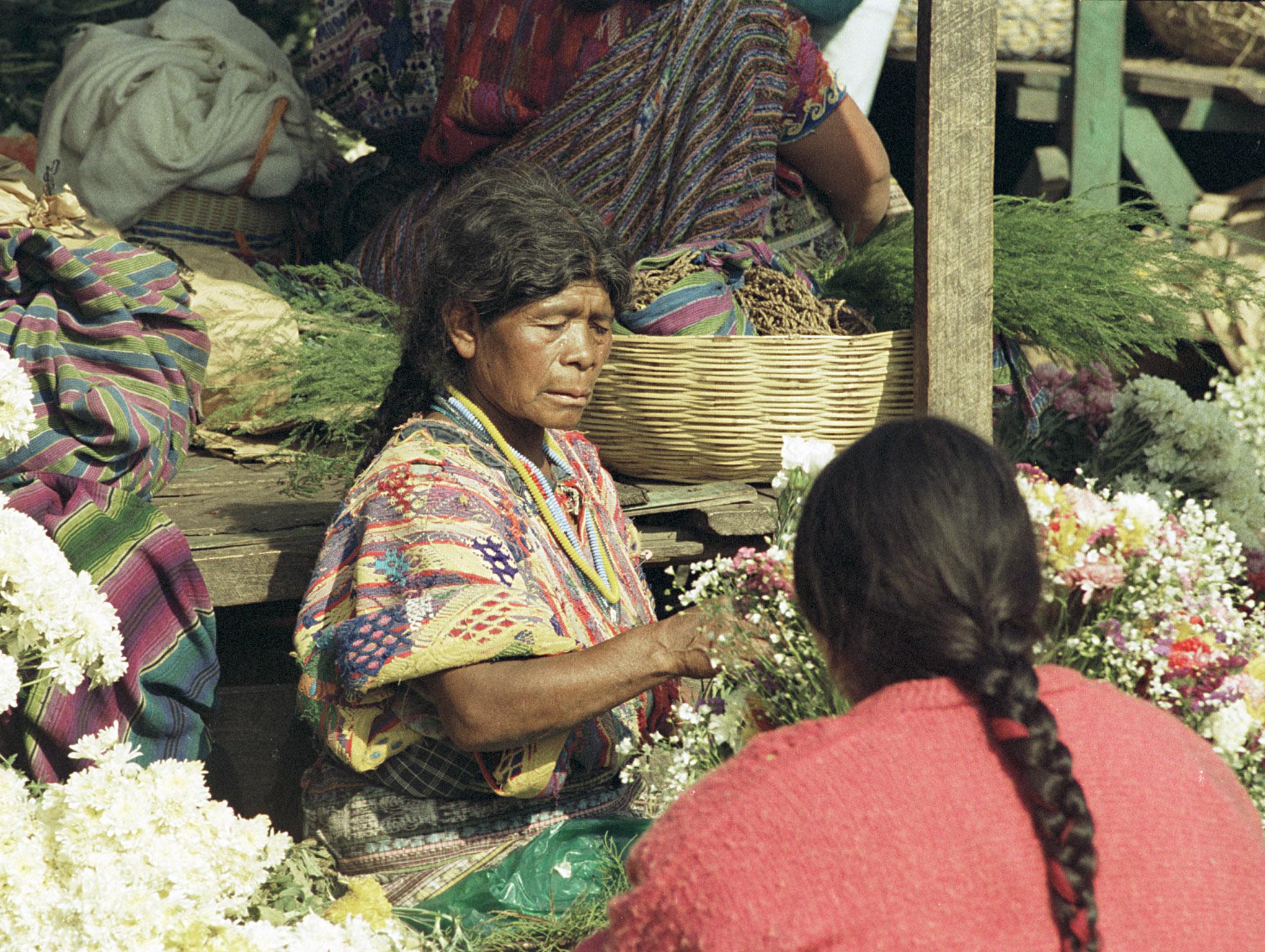 Guatemalans - 4b