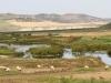 Sebou River 1