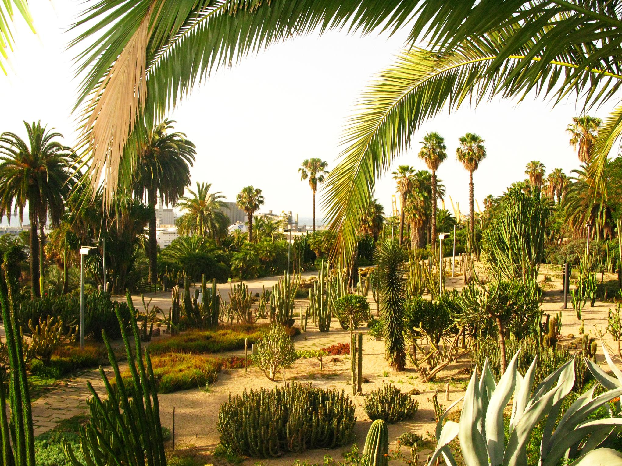 Spain moss n cinto verdaguer jardin barcelona jearld for Barcelona jardin