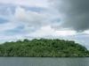Nature in Brazil - The Amazon -1