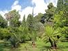 Orto Botanico - 2