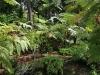 Orto Botanico - 6