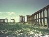 Palmyra - 4
