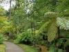 Furnas Gardens 2