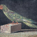 Mosaic Parrot, Pergamon Museum thumbnail